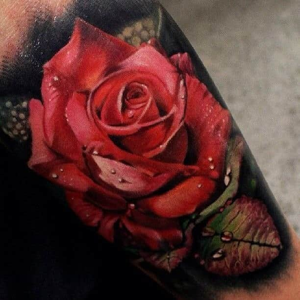 фото цветная роза