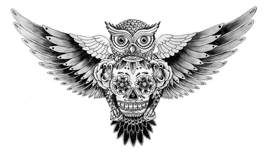 эскиз тату совы с черепом
