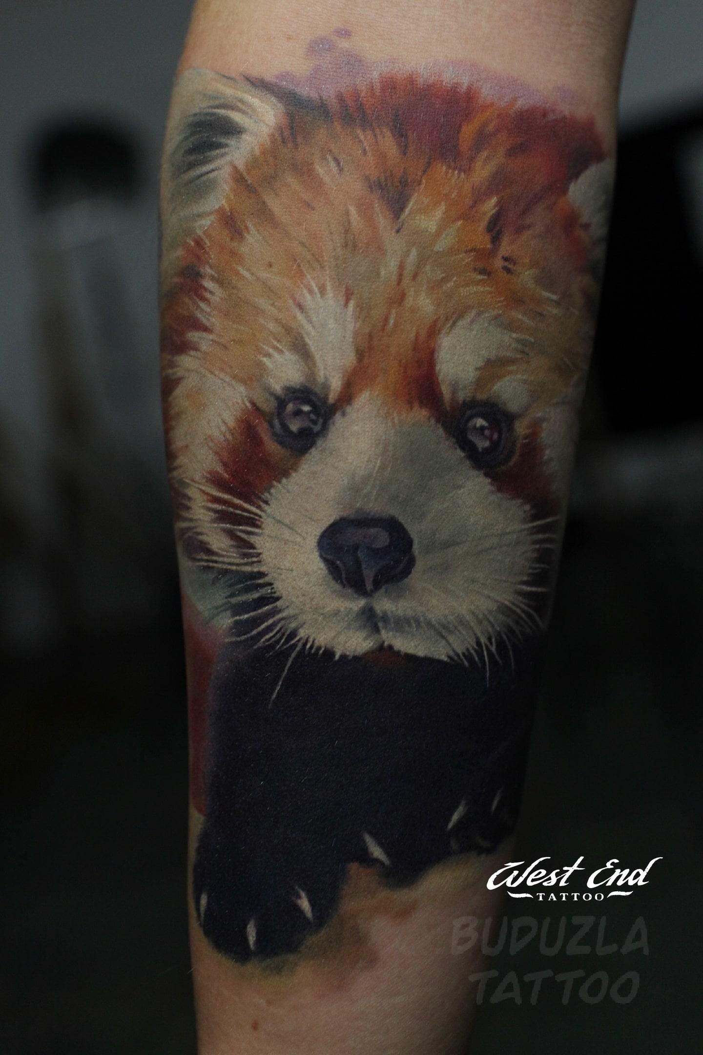Тату Красная панда цветная реализм