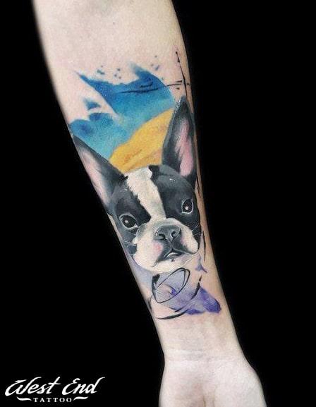 Тату собака цветная тату реализм