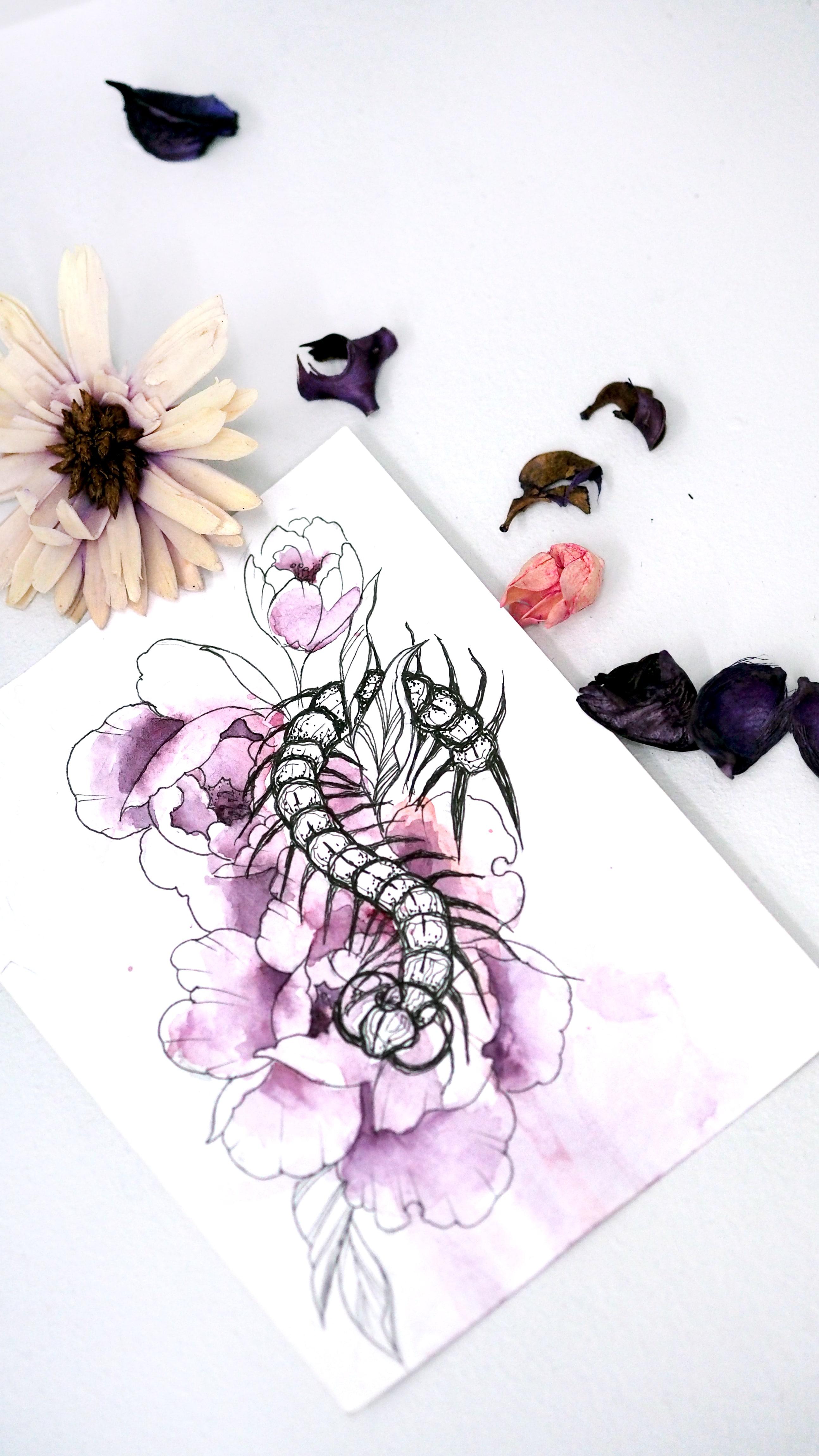 Эскиз графика женский эскиз сколопендра гусеница