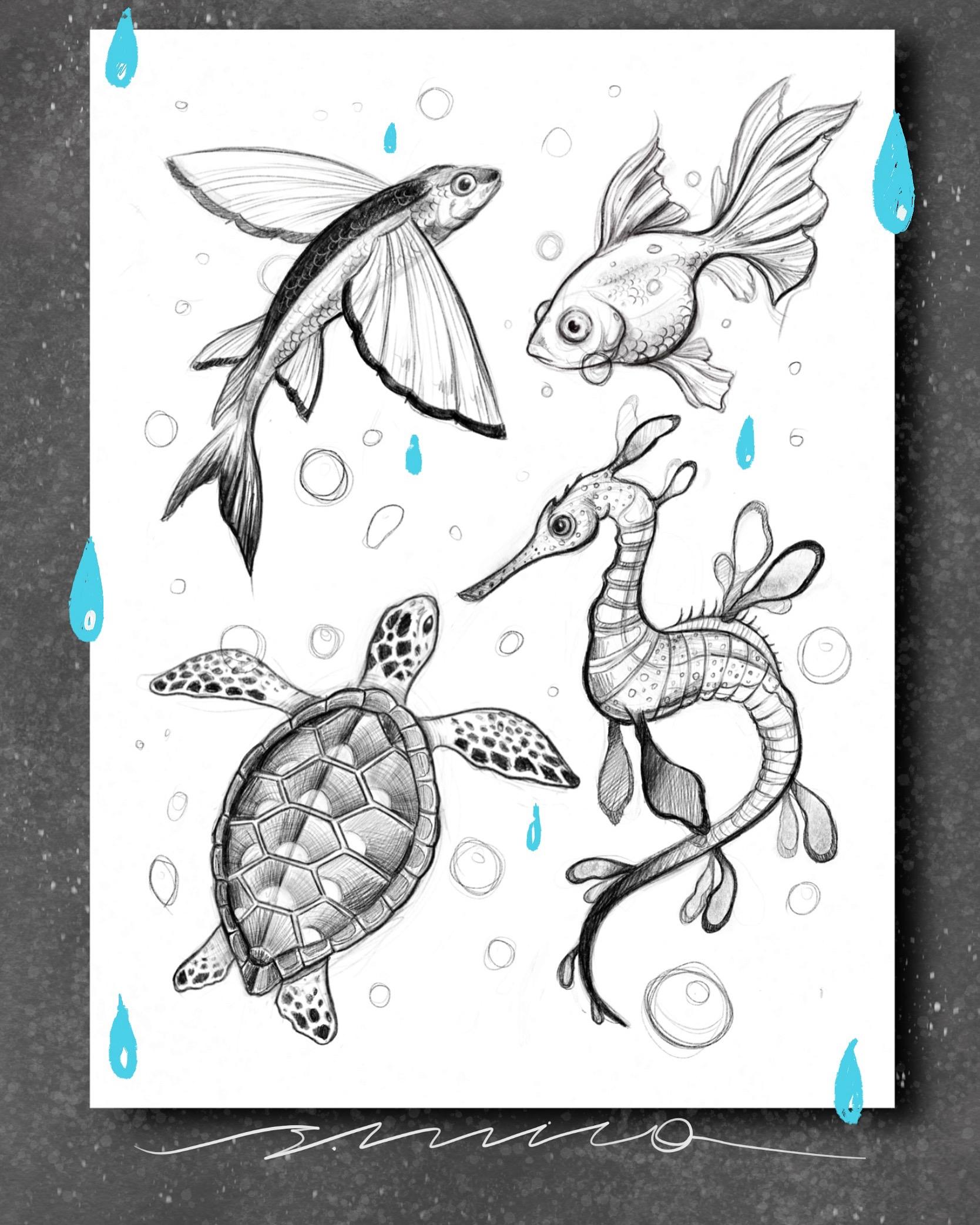 Эскиз рыбки черепашка графика
