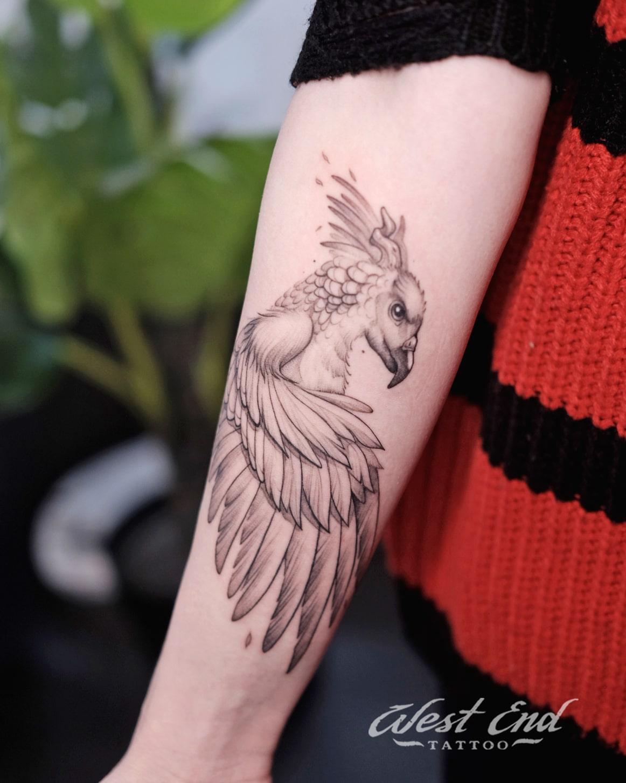Тату попугай на руке