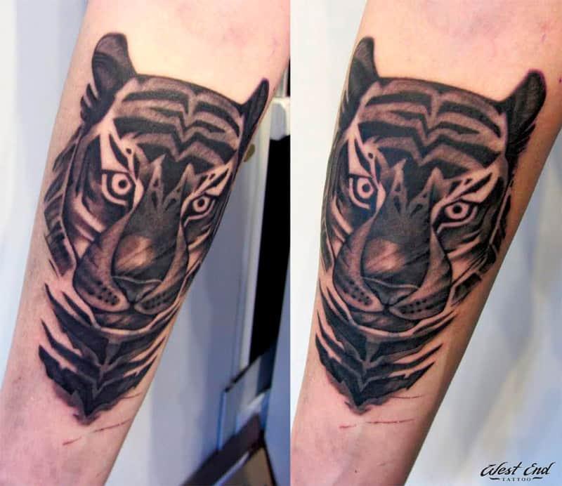 Тату тигр на предплечье