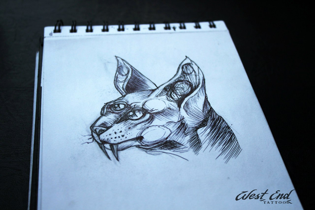 Эскиз саблезубая кошка графика
