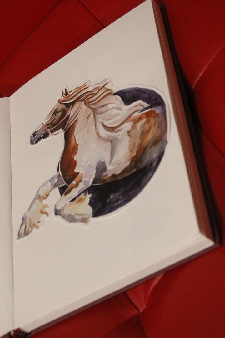 Эскиз конь
